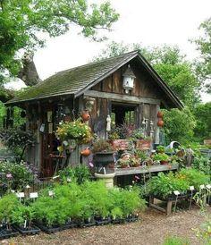 Cottage Garden Shed!~ Garden Shed Garden Cottage, Home And Garden, Farmhouse Garden, Garden Oasis, Easy Garden, Garden Tips, Greenhouse Shed, Cheap Greenhouse, Portable Greenhouse