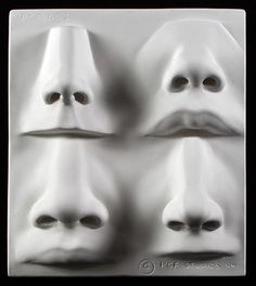 Human Nose Sculpting Reference Cast