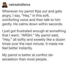 Funny story of someone who soothes his parrot with a nice HEEEEYYYY when it gets angry and the story reversed when human got mad at something.