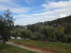 http://www.roomsevilla.com/about-sevilla/events-and-news-student/103-trips/243-trip-to-granada