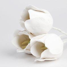 Одиночные Средние тюльпаны - белый