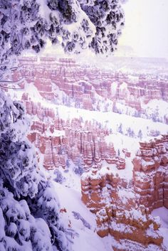 These breathtaking pictures from the National Park Service prove that America is a real-life winter wonderland.