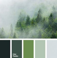 FARBE DES JAHRES 2017 - Grün - Pantone The Effective Pictures We Offer You About wedding color palette september A quality picture can tell you many things. You can find the mo Kitchen Paint Schemes, Kitchen Colour Schemes, Kitchen Colors, Kitchen Design, Kitchen Ideas, Purple Kitchen, Pantone Green, Pantone Color, Color Of The Year 2017