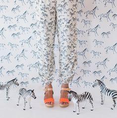 Oh Joy Zebra
