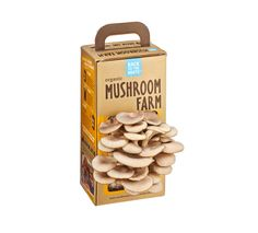 Grow gourmet, organic oyster mushrooms right out of the box in just 10 days! Just open the box, mist with water, and harvest 10 days later. The Mushroom Farm la