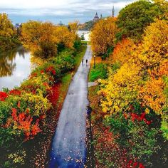 What an amazing view for a jog in downtown Ottawa!   Fore more information, please visit www.ottawatourism.ca Autumn Day, Fall, Visit Canada, Canada Travel, Ottawa, Ontario, Country Roads, Cityscapes, World