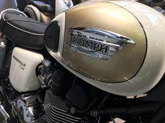 The white-gold Triumph Bonneville's gastank.