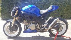 My sv1000 streetfighter