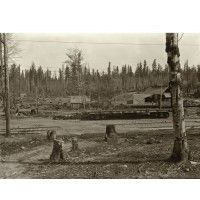 Oregon Water Power & Railway Cars at Logging Camp - Indahl