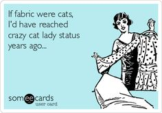 If fabric were cats, I'd have reached crazy cat lady status years ago... | Find fun fabrics for your next project www.myfabricdesigns.com