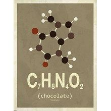 Molekyle Chokolade 50x70 fra Incado