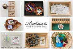 Montessori Math and Science Trays for home school co-op. DIY ideas that are easy to make.