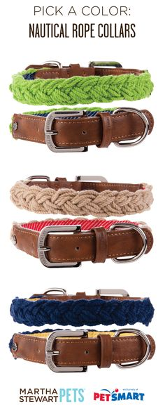 #MarthaStewartPets #nautical #rope dog collars - which color is your favorite? Sold exclusively at #PetSmart.