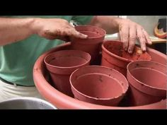 Video Tutorial: Brilliant Container Gardening Tip - Garden Lovers Club plants Organic Gardening, Gardening Tips, Gardening Gloves, Gardening Supplies, Vegetable Gardening, Gardening Books, Indoor Gardening, Permaculture Garden, Hydroponic Gardening