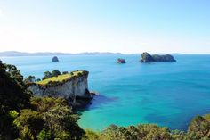 Coromandel Coastline Walk | 22 New Zealand Hikes You Need To Do Before You Die