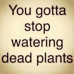 Stop watering dead plants...bad relationships...bad friendships...stop embracing negativity.