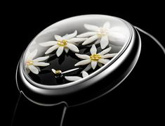 Edelweiss collection by Van 't Hoff Art Watch, Jewelry Watches, Van, Plates, Tableware, Ethnic Recipes, Collection, Food, Women