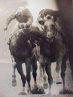 """'Secretariat' - One of the greatest Thoroughbred photos ever taken. And some say, """"Horses don't have personalities."""""""