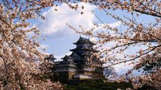 Japan Travel Information and Travel Guide - Lonely Planet