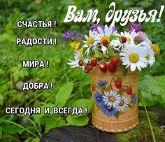Jolie Images, Congratulations, Planter Pots, Words, Flowers, Plants, Live, Ukraine, Holidays