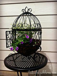 New bird cage upcycle birdcage planter Ideas Dream Garden, Garden Art, Garden Design, Birdcage Planter, Homemade Bird Feeders, Diy Spray Paint, Bird Wallpaper, Bird Theme, Bird Artwork