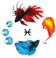 Pisces tattoo. Love the Japanese fighting fish idea