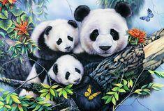 Tropical Painting - Img262 by Jenny Newland Panda Family, Panda Art, Paper Napkins For Decoupage, Little Panda, 5d Diamond Painting, Cute Panda, Cross Paintings, Blue Bird, Giclee Print