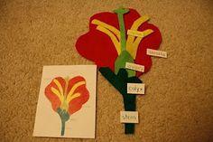 Parts of a flower felt puzzle.