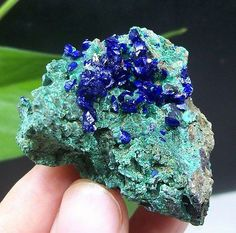 Electric-Royal-Blue-Azurite-Crystal-on-Green-Malachite-Specimen-Anhui-China-1015