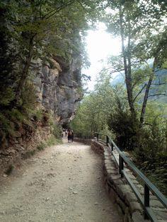 Parque Nacional de #Ordesa y Monte Perdido #travel #viajar National Park #Huesca Aragón #Aragon #montanas montañas #mountains #paisajes #landscape #pirineos #pyrenees #bosque #forest #camino #road