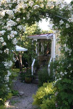 trädgård – Genieo Yahoo Sökresultat