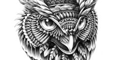 Ornate Owl Head Art Print by BIOWORKZ | Owl, Art Prints and Art