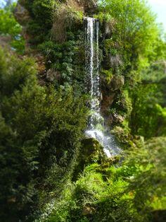 ©Vincent Brun Parc de Bagatelle such beauty...