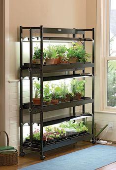 Indoor Gardening Kit Ikea introduce a hydroponic indoor gardening kit design decor 3 tier sunlite garden workwithnaturefo