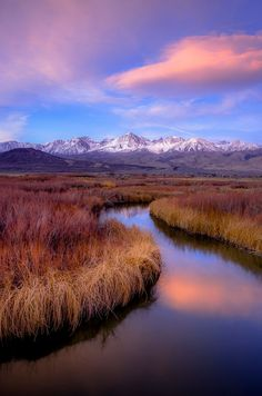 Owens River (Arizona) by Aaron Huang on 500px