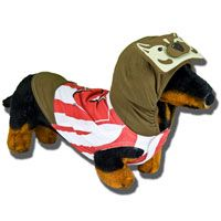 Don't leave out the dog - he's a badger too!  Happy Halloween for $24.99!