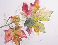 Tree Watercolor Painting, Watercolor Painting Techniques, Watercolor Leaves, Watercolor And Ink, Desenho Tattoo, Painted Leaves, Autumn Art, Leaf Art, Drawings