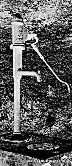 """""""Erzähl von den Brunnen, von Brunnenkranz, Brunnenrad von Brunnenstuben - erzähl- […] Wasser : welch ein Wort. Wir verstehen dich, Leben"""" Paul Celan"""