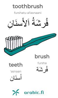 "Learning Arabic MSA ( The Arabic word for ""toothbrush"" is an idafa construction of the Arabic word for ""brush"" and the Arabic word for ""teeth"". Literally the construction means ""brush of the teeth"". Arabic Verbs, Arabic Phrases, Urdu Words, Arabic Conversation, Spoken Arabic, Speak Arabic, Learn Turkish Language, Learn Arabic Alphabet, Learn Arabic Online"