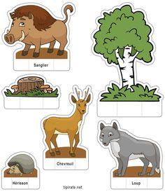 Apprendre les noms des animaux de la forêt, le sanglier, le chevreuil, le loup et le hérisson