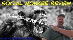 Social Monkee Review - Social Monkee Reviews