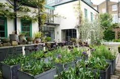 neisha crosland garden - Google Search
