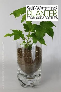 Here's a wonderful and practical upcycle project! We've got three different types of planters you can make using plastic soda bottles! One is even self-watering.Here are three pretty ways to upcycle soda bottles and convert them into lovely plant Soda Bottle Crafts, Plastic Bottle Crafts, Soda Bottles, Water Bottles, Plastic Bottle Planter, Empty Plastic Bottles, Recycled Bottles, Bottle Garden, Garden Pots