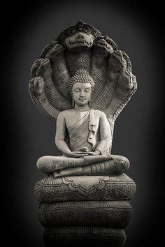 Light Of Buddha Image In The Dark Background. Photograph by Artpritsadee Light Of Buddha Image In The Dark Background. Photograph by Artpritsadee