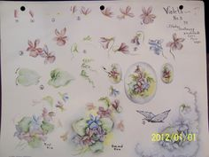 China Painting Study 3 Violets Gladys Galloway 5 Pages   eBay