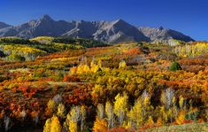 Best Places to See Fall Color in Colorado