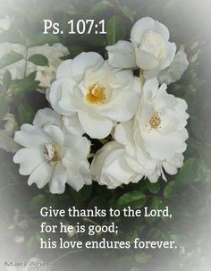 Psalm 107:1 (KJV) O give thanks unto the LORD, for he is good: for his mercy endureth for ever.