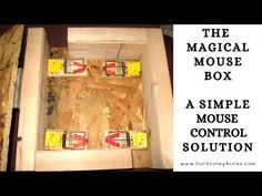 The Magical Mouse Box - A Simple and effective Mousetrap Solution for your Home and Garden Hey Guys, I hope you enjoy this week's video that has tips on gett. Rat Trap Diy, How To Make Magic, Getting Rid Of Mice, Chicken Bird, Mice Control, Pest Control, Mouse Traps, Needle Felting Tutorials, Building A Chicken Coop