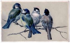 paintings of birds on branches | Vintage Image - Blue Birds on Branch - The Graphics Fairy