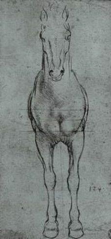Leonardo da Vinci (Horse study) Art Poster Print Masterprint